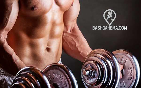 رشد عضلات