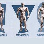شناخت نوع و تيپ بدنی برای طراحی برنامه بدنسازی